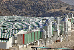 Jednostki filtracyjne AirProTec zainstalowane na fermie trzody chlewnej w Hiszpanii