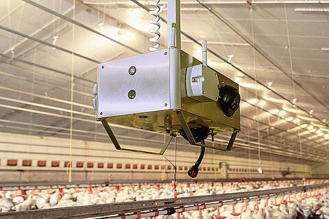 [NOWOŚĆ!] Robot analizujący dane ChickenBoy