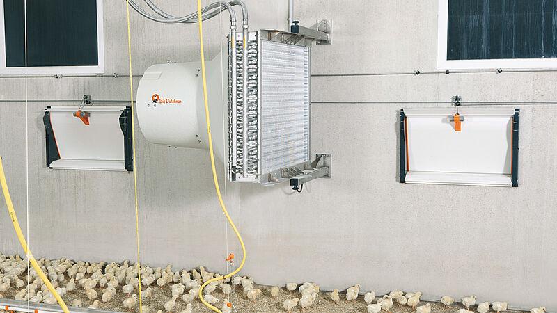 Klimat w kurniku: optymalne temperatury w kurniku dzięki grzejnikowi HeatMaster