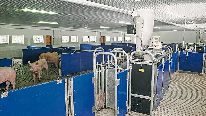 System sterowania stacją karmienia wywoływanego: Callmatic 2